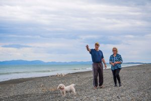 Dog friendly camp South Island Leithfield Beach