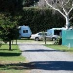 leithfield-beach-motor-camp (1)